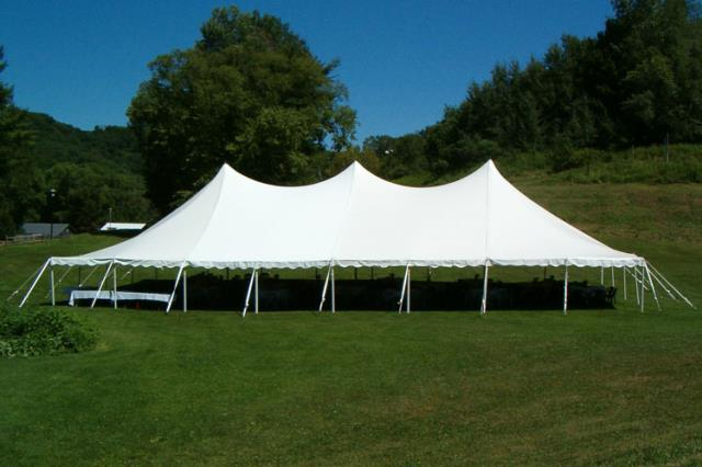Where to find CANOPY, 30 X60  WHITE in Helena