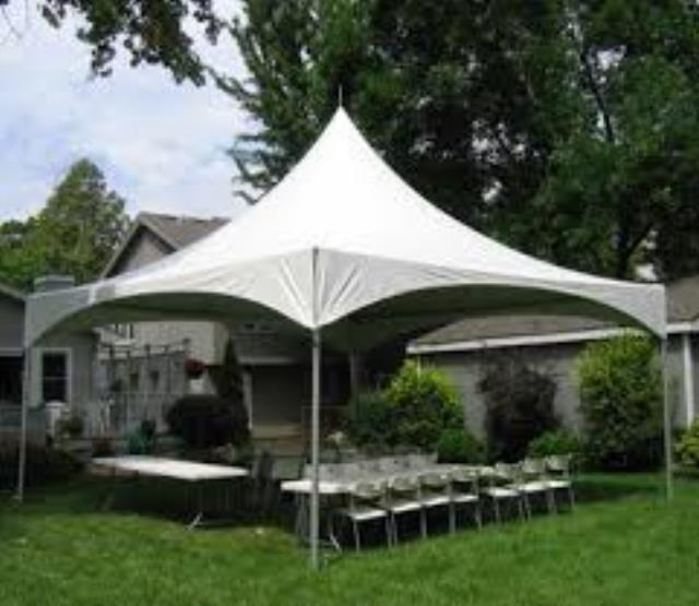 Where to find CANOPY, 20X20 FREESTAND WIRE in Helena